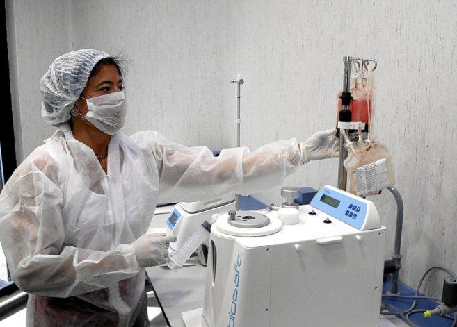 Una sanitaria realiza el proceso de criopreservación para almacenar...