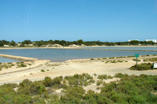 Imagen del Parque Natural de Ses Salines en Formentera.