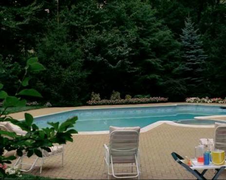 La piscina de Tony, sin los patos.