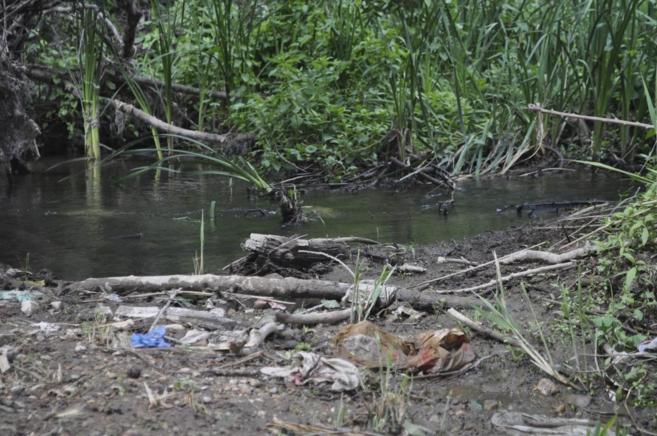 Basura a orillas del río Henares, a la altura del municipio...