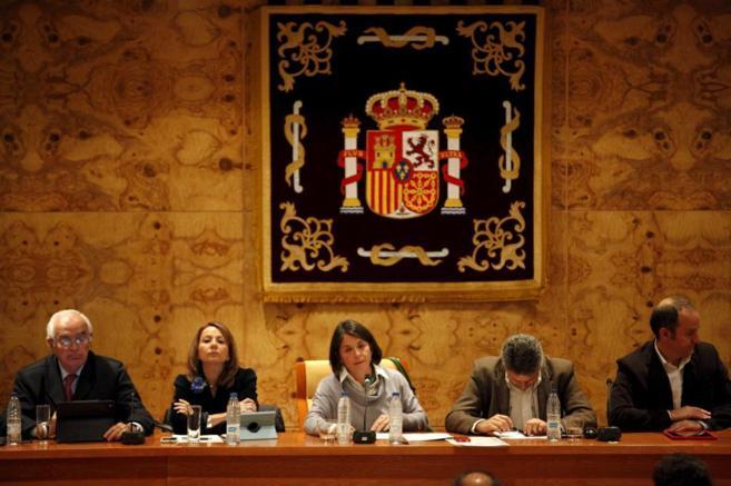 La alcaldesa de Torrelodones durante un Pleno Municipal.