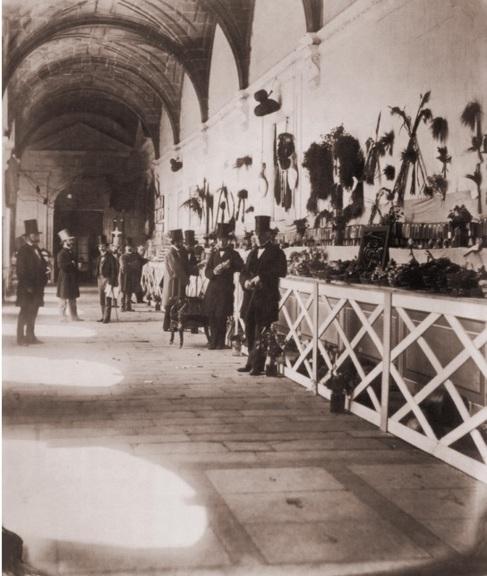 Una de las imágenes de la exposición.