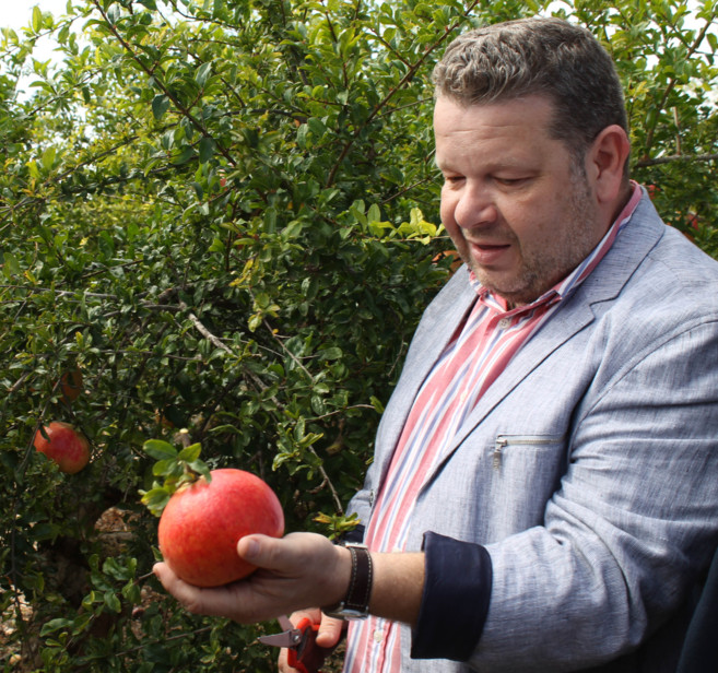 Alberto Chicote sostiene la primera granada del cultivo de este año.
