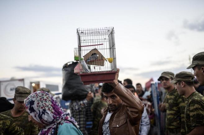 Un refugiado sirio lleva un pájaro al atravesar la frontera con...