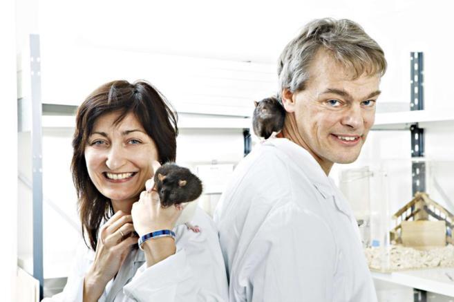 El matrimono Moser con algunas de las ratas de su laboratorio en una...