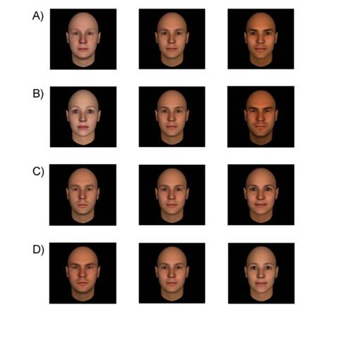 Caras generadas por ordenador para evaluar la competencia (A), el...