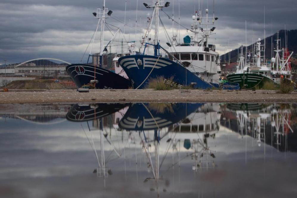 Barcos pesqueros de Bermeo amarrados en el canal de Deusto de Bilbao...