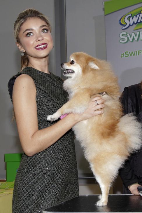 El pasado mes, la actriz de 'Modern Family' Sarah Hyland participó...