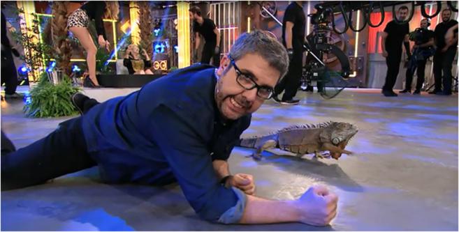 Florentino Fernández bromea con uno de los animales.