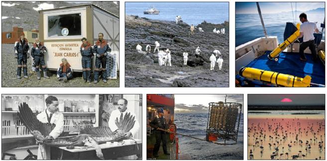 De izquierda a derecha, de arriba abajo:  Base Antártica Juan Carlos...