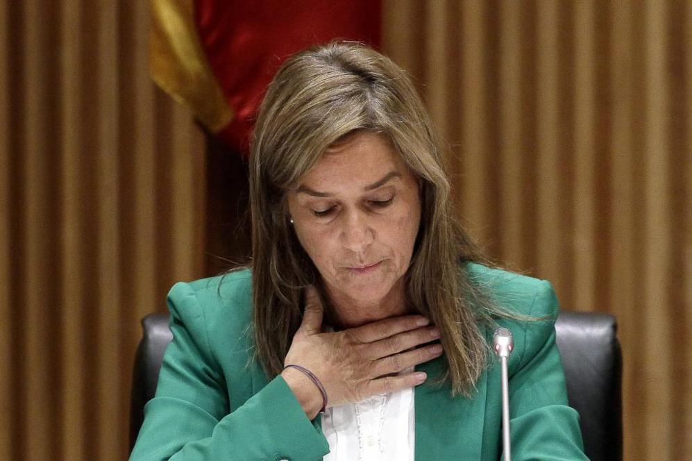 La ex ministra de Sanidad, Asuntos Sociales e Igualdad, Ana Mato,...