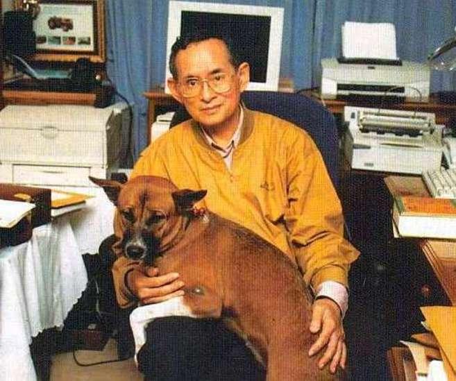 El rey Bhumibol, con su perro favorito, en una foto de archivo.