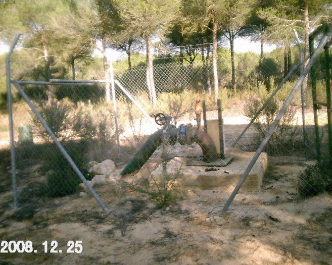 Fotografía tomada a finales de 2008 por agentes de medio ambiente de...