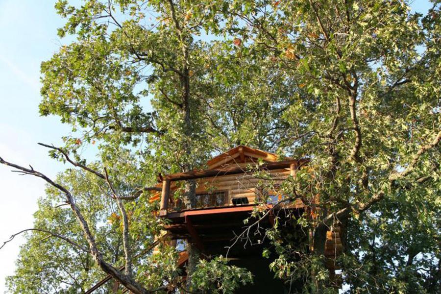 5 Cabanas Para Dormir En Los Arboles Bonitos Ecologicos - Casas-en-los-arboles