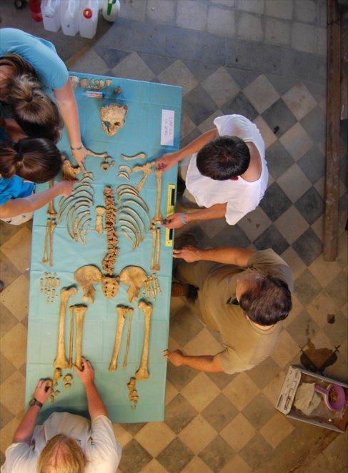 Investigadores estudian uno de los esqueletos recuperados.