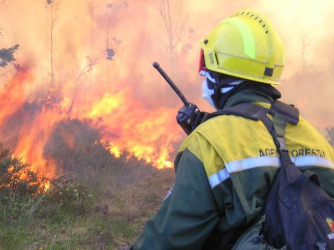 Un agente forestal durante una intervención en un incendio forestal...