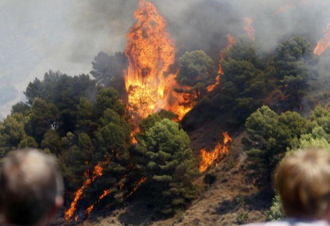 Incendio en el Paraje Natural de los Montes de Málaga, zona los...