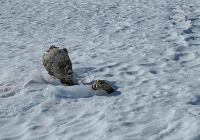 Uno de los cuerpos momificados encontrados en el Pico de Orizaba