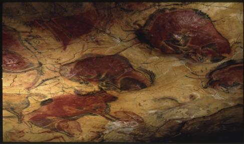 Bisontes en la Cueva de Altamira