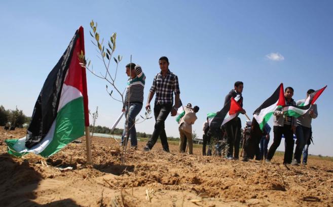 Palestinos 'plantan' banderas en la Franja de Gaza.