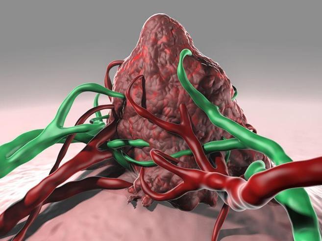 La vacuna amplía la respuesta inmunológica de pacientes de ciertos...