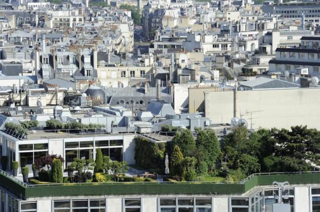 Un 'techo verde' en un tejado de un edificio de Francia.