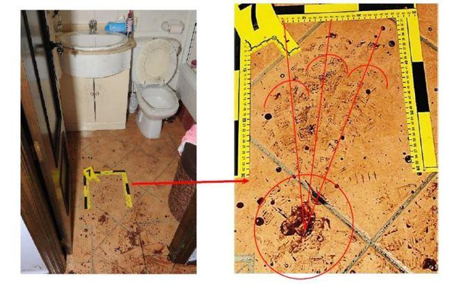 Algunas de las imágenes que acompañan el informe pericial sobre las...