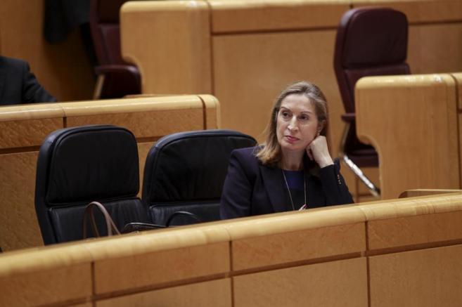 La ministra de Fomento, Ana Pastor, durante una sesión de control al...