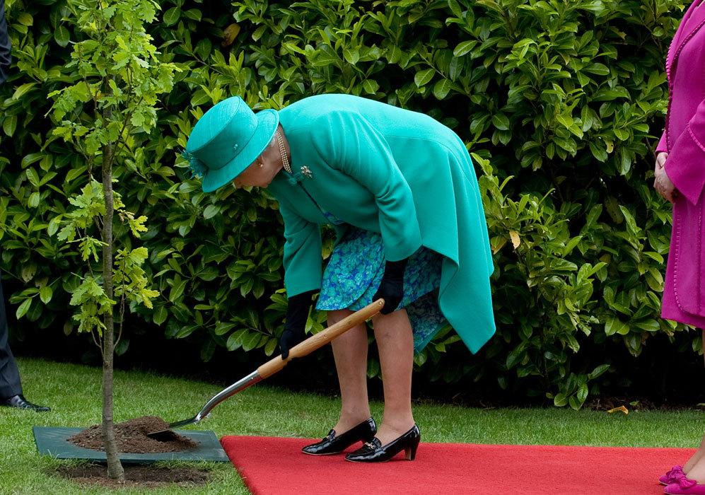 Isabel II se ha caracterizado por su buena salud, con escasas...