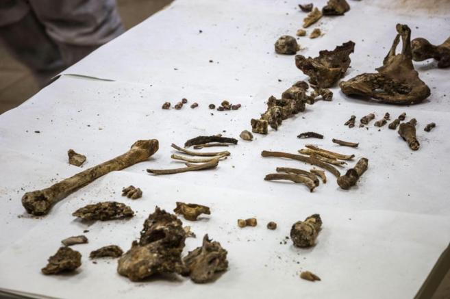 Imagen de los restos hallados en el Convento de las Trinitarias.