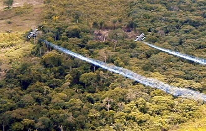 Momento en el que dos aviones fumigan una plantación de coca.