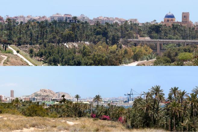 Dos imágenes panorámicas de Elche (arriba) y Alicante (abajo).
