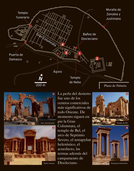 Centro de la ciudad doble tipo  Palmira, las ruinas de la antigüedad que destroza el Estado Islámico | La  Aventura de la Historia | EL MUNDO