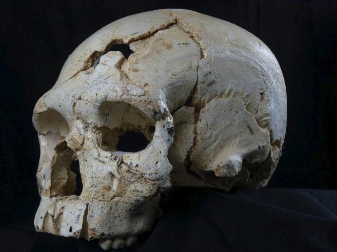 Cráneo con los indicios del asesinato más antiguo hallado en...