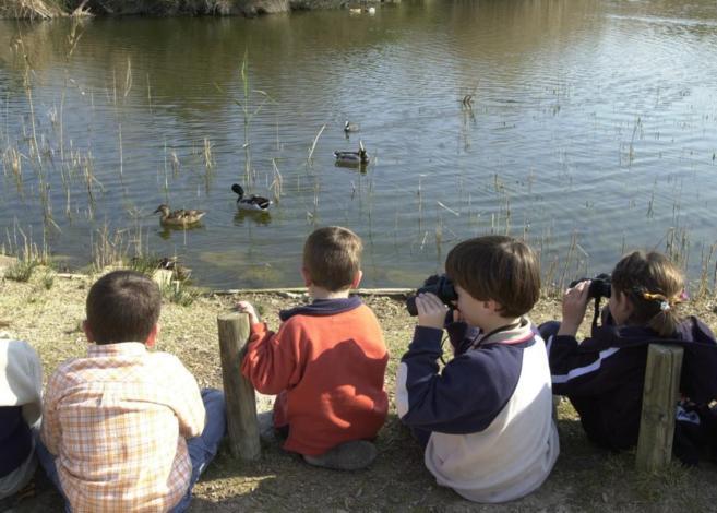 Niños en el Parque Natural de la Albufera de Baleares.