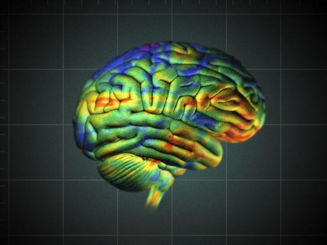 La imagen generada distingue el tejido sano del cancerígeno.