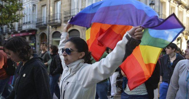 Día del Orgullo Gay de Vitoria en 2013