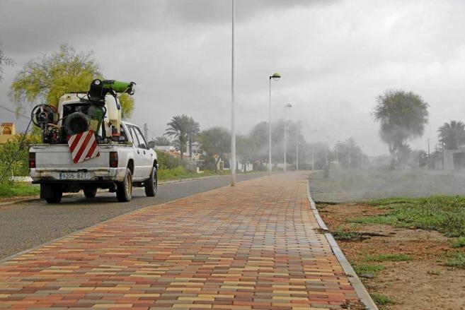 Un equipo fumiga la ciudad de Torrevieja por la plaga del mosquito...