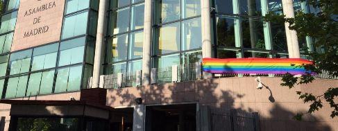 Fachada de la Asamblea de Madrid en la que se ha colocado una bandera...