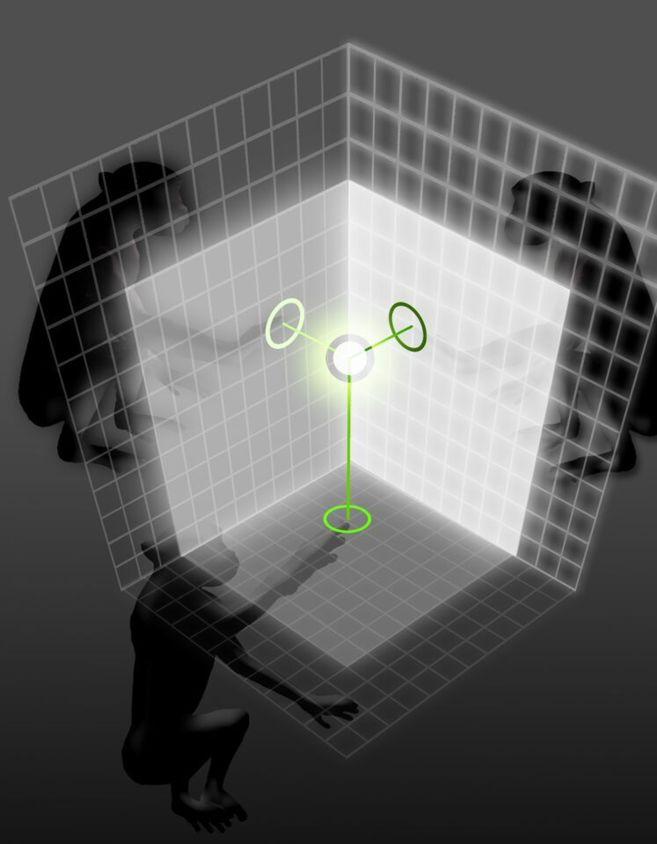 La imagen muestra el trabajo conjunto entre tres monos para mover un...