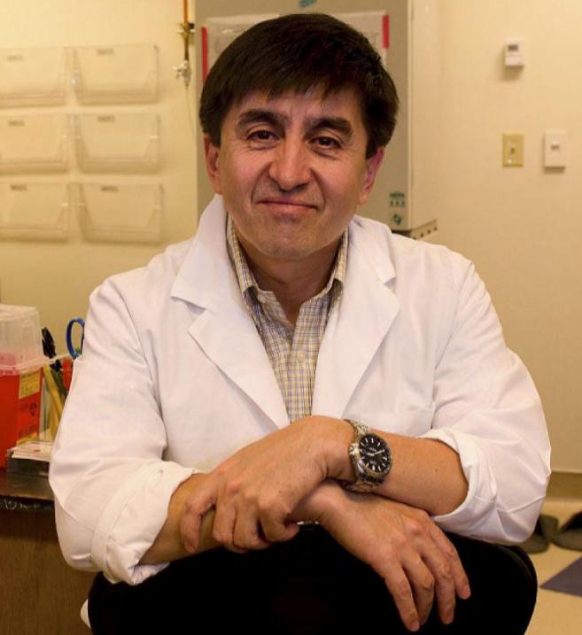 El doctor Shoukhrat Mitalipov, en su laboratorio de Oregon.