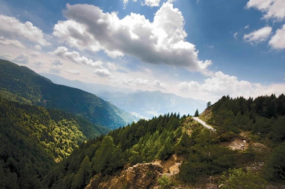 """<b>ZONCOLAN*</b>  (Desde Ovaro / Friuli-Venecia, Italia). Altitud 1730 metros/ Altitud 1730 metros / Longitud 10.1 km / Pendiente media 11. 9 km / Pendiente máxima 22% (km 3,5). Se subió por primera vez en 2003 y su """"monstruosa reputación"""" persigue a este zar de los tres ascensos. Carretera estrechísima, rodeada de árboles, tres túneles en los últimos dos km y un mirador en la cima. """"La parte más fácil de esta escalada es más difícil que lo más difícil del Tour de Francia. La escalada más difícil de Europa, mucho más difícil que el Mortirolo. Una ascensión mortificadora"""", palabras de <b>Gilberto Simoni</b>, ganador allí en 2003 y 2007. Una subida en los umbrales del masoquismo a dos ruedas, un monumento al sufrimiento."""