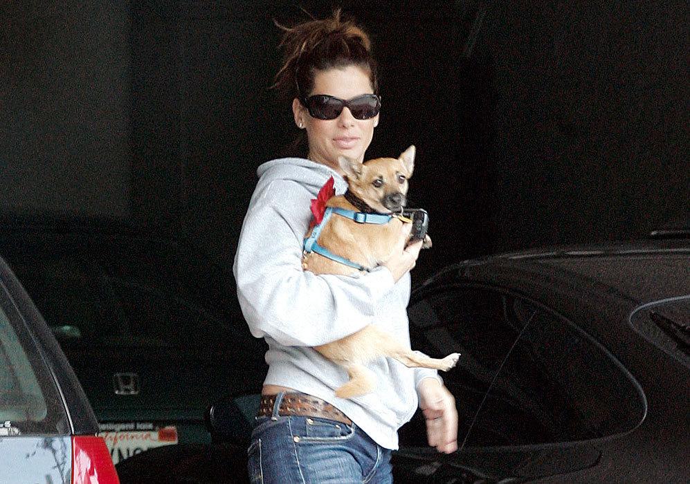 Sandra Bullock es, además, una amante de los animales. Así lo ha...