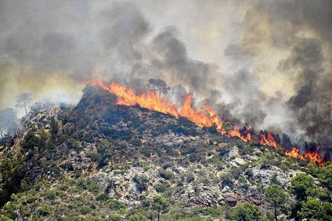 El fuego arrasando un pinar en el incendio de Andratx de 2013.