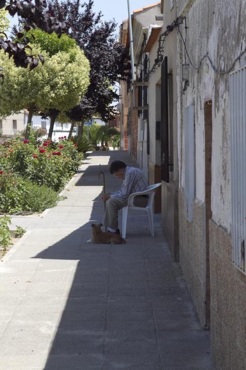 La eternidad en Almodóvar: un hombre, su perro, su garrote y la...