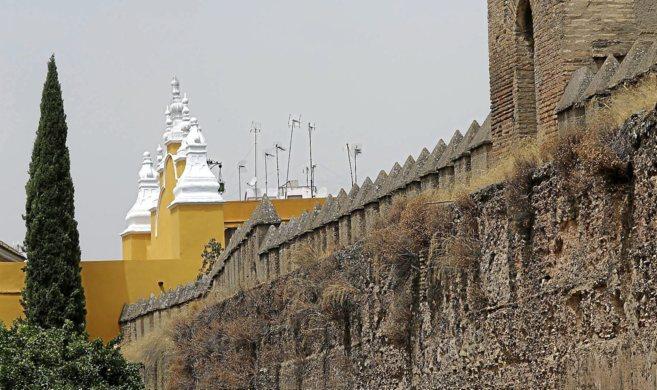 Aspecto de la parte almenada de la muralla de la Macarena, deteriorada...