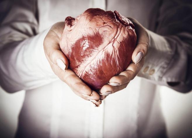 El prolapso de la válvula mitral es una de las valvulopatías más...