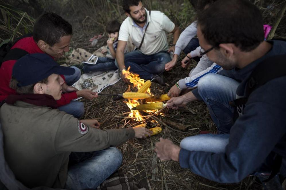 Un grupo de sirios cocina mazorcas sobre una hoguera junto a las...