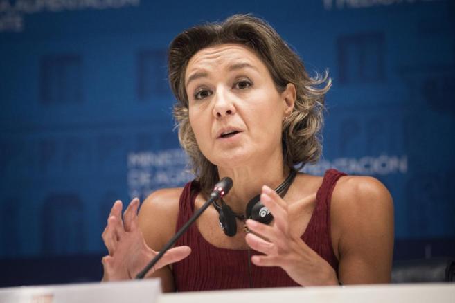 La ministra española de Agricultura, Isabel García Tejerina, durante...
