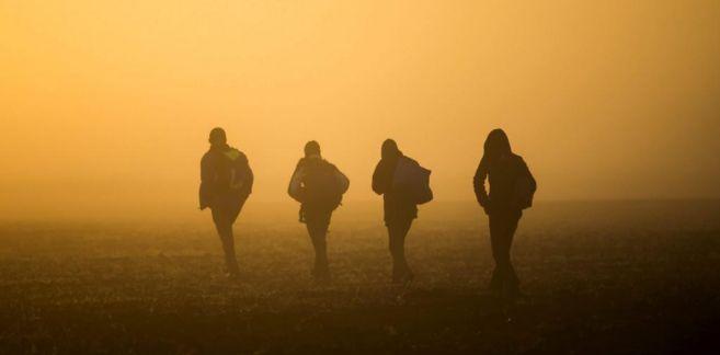 Cuatro refugiados caminan por el campo cerca de la frontera de...